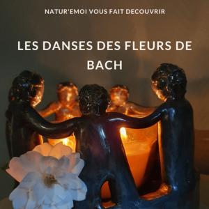Fleurs de Bach - Danses - 3