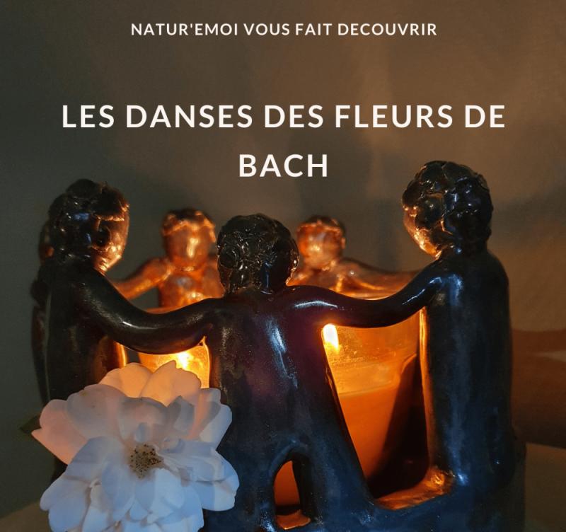Fleurs de Bach - Danses - 7